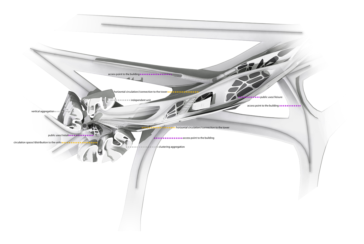 diagrammatic plan-section of horizontal branches-public spaces